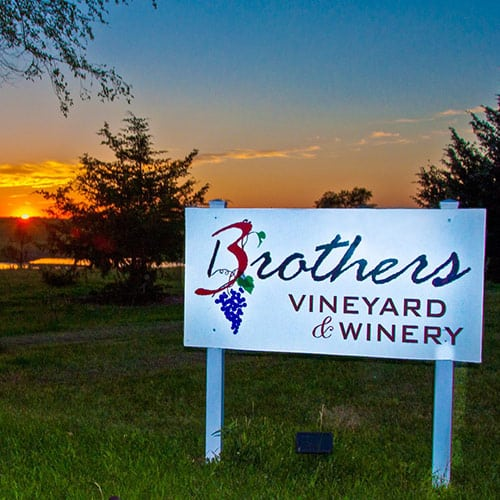 3 Brothers Vineyard